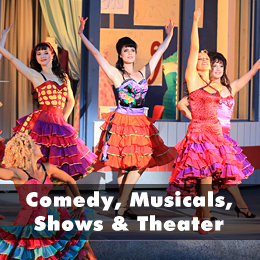 Ticketalarm: Comedy, Musicals, Shows & Theater
