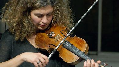 Geigen-Suche auf Social Media
